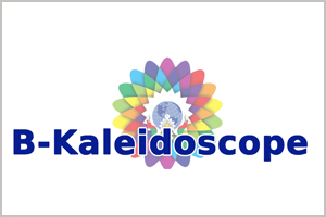 Business Kaleidoscope